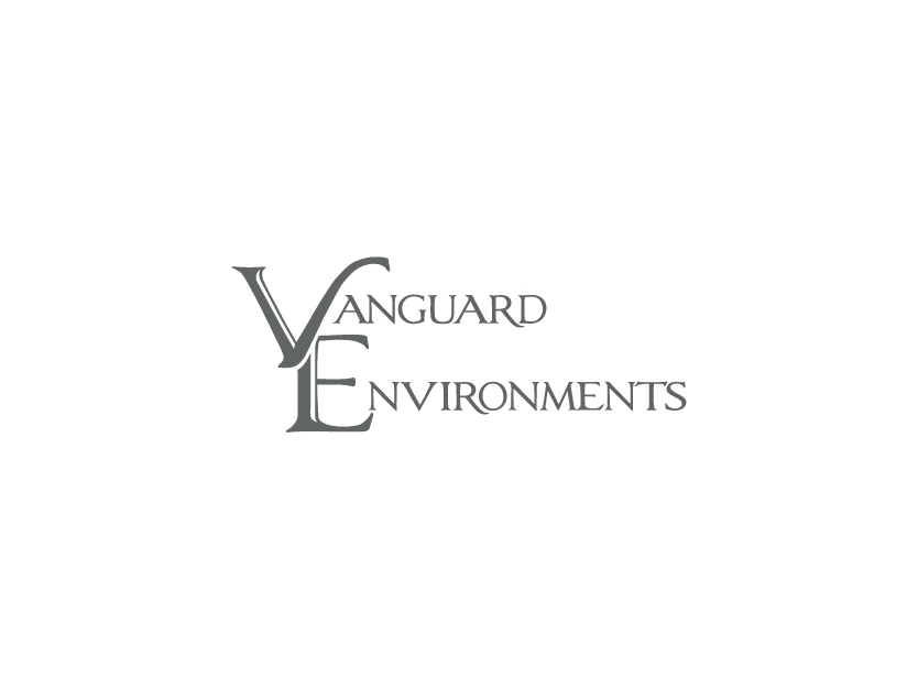 Vanguard Environments